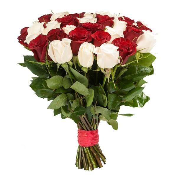 29 baltų ir raudonų rožių puokštė