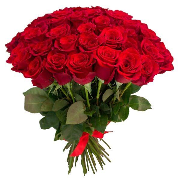 Фото букет красных роз