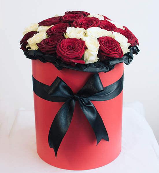 Baltos ir raudonos rožės gėlių dėžutėje