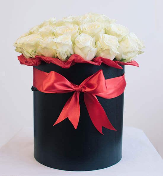 Baltos rožės gėlės dėžutėse