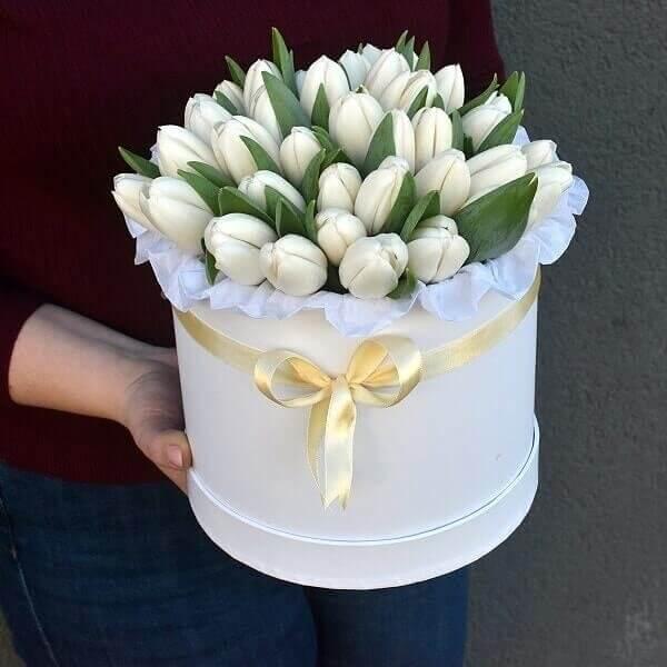 Baltos tulpės gėlės dėžutėse