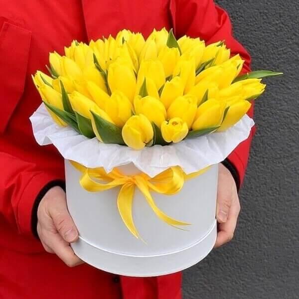 Geltonos tulpės gėlės dėžutėse