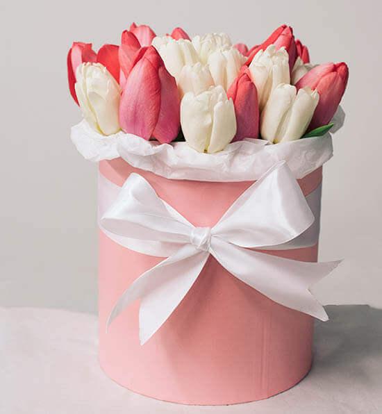 Rožines ir baltos tulpės gėlės dėžutėse