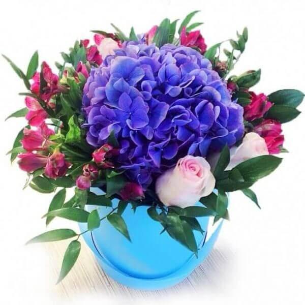 Šiluma gėlės dėžutėse