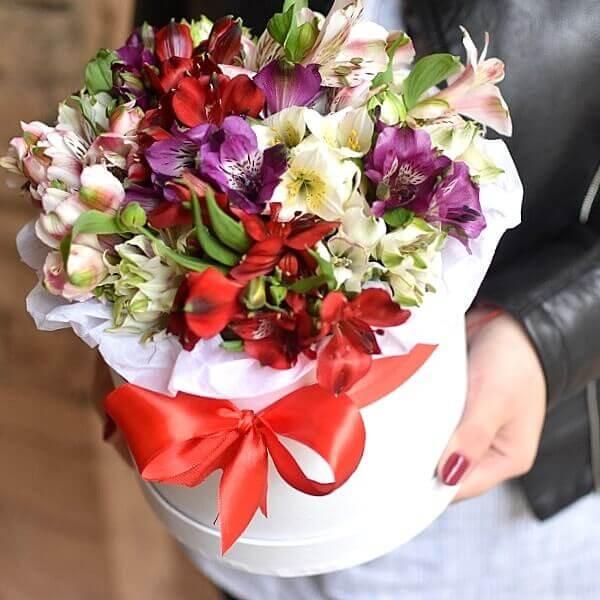 Spalvingos alstromerijos gėlės dėžutėse