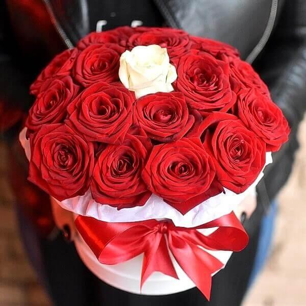 Rudonos ir viena balta rožė gėlės dėžutėse