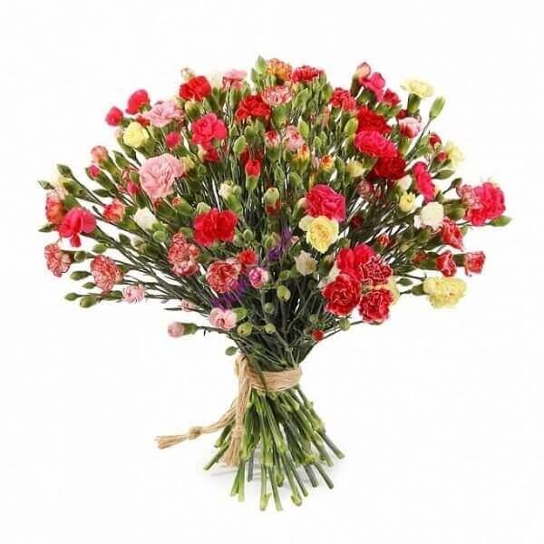 Gvazdikų šakelės gėlių puokštė