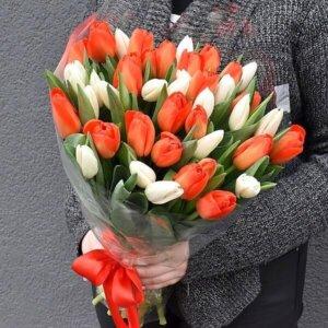 Raudonos ir baltos tulpės gėlės puokštėse