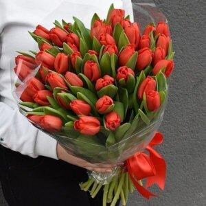Raudonų tulpių puokštė