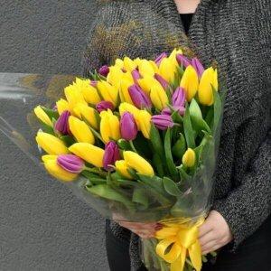 Geltonos ir violetinės tulpės gėlės puokštėse