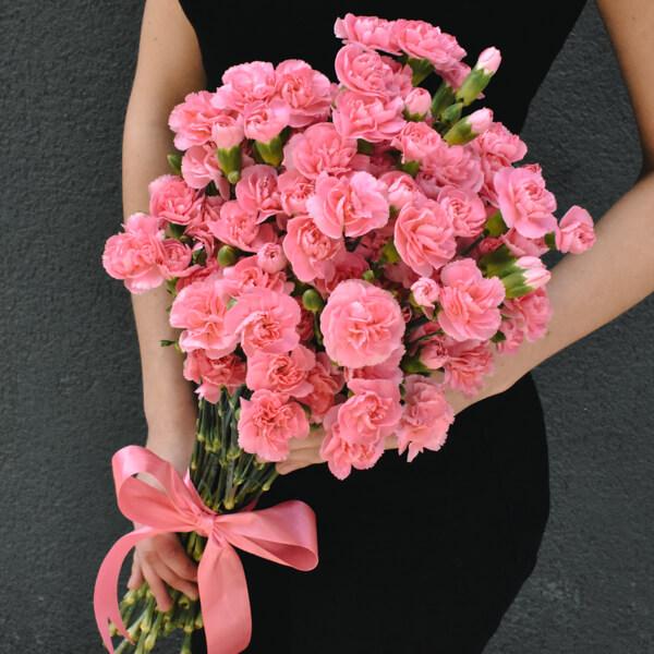 Gėlės merginai Vienspalviai smulkūs gvazdikai