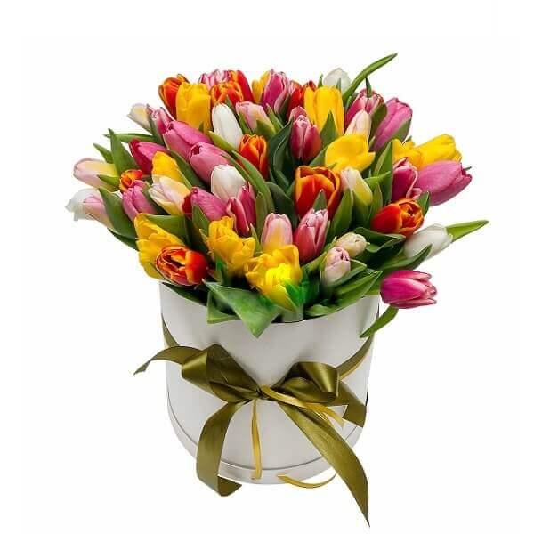 Įvairių spalvų tulpės gėlės dėžutėse