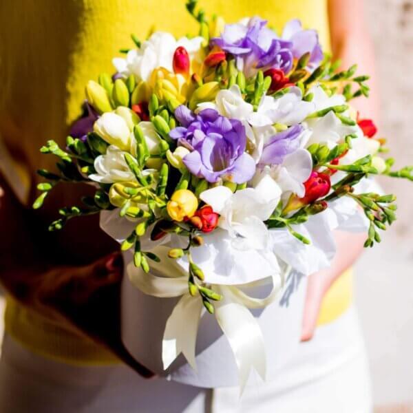 Spalvotos frezijos gėlės dėžutėse