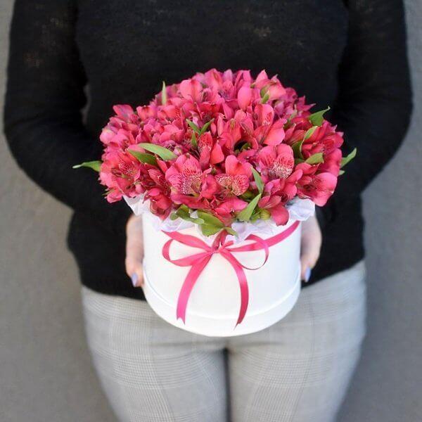 Gėlės dėžutėje Vienspalvės Alstromerijos