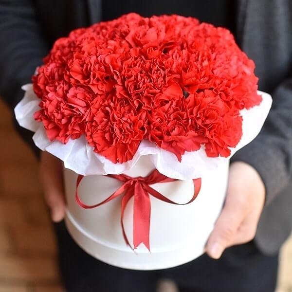 Gėlės dėžutėje Gvazdikai