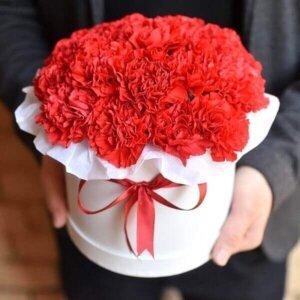 Raudoni gvazdikai gėlių dėžutėse