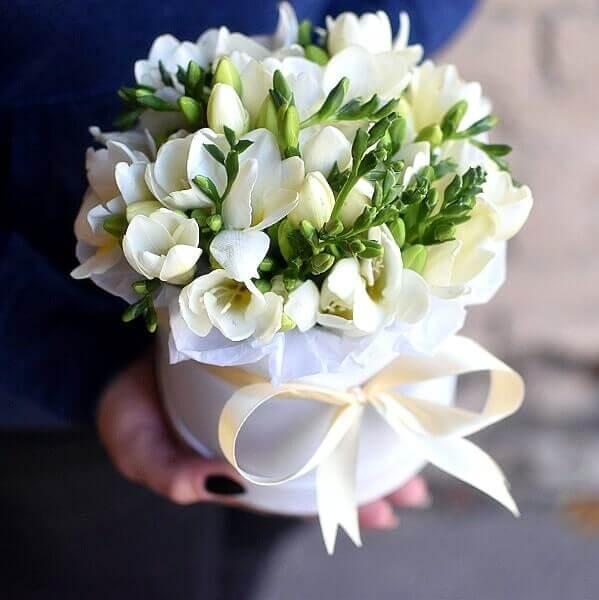 Vienspalvės frezijos gėlės dėžutėse