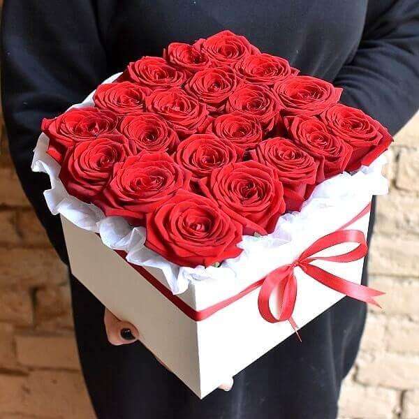 Raudonos rožės kvadratinės gėlių dėžutės