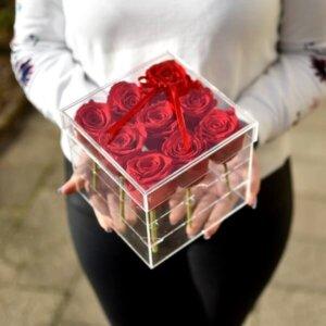 Raudonos stabilizuotos rožės akrilinėje dėžutėje