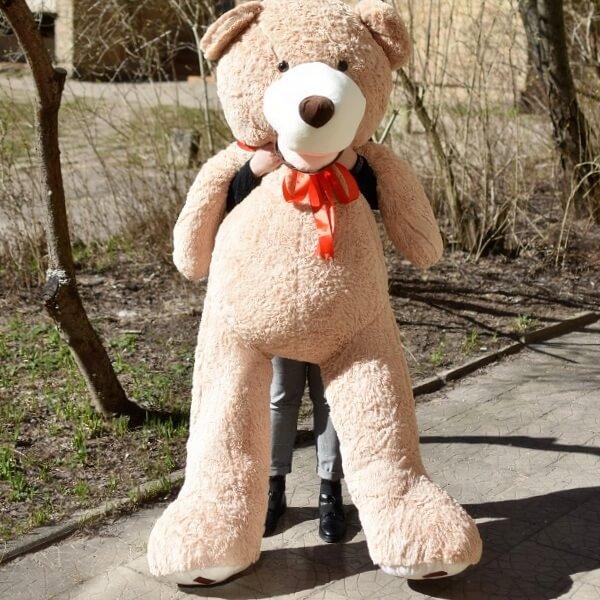 XXL dydžio pliušinis meškinas Tedis