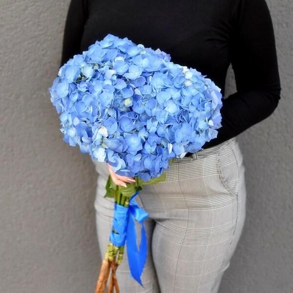Mėlynų hortenzijų puokštė