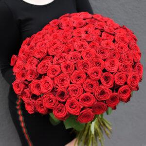 Dovanos merginoms Įspūdingos raudonos rožės